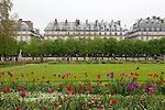 Tuileries Gardens (Jardin des Tuileries) and Parisian architecture in spring, Paris, France, Europe