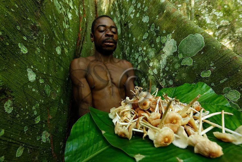 """A honey-hunter with the """"Ndjingo"""" mushroom he gathered from amongst the buttress roots of the sacred tree of the ancestors.///Un chasseur avec sa récolte de champignons «Ndjingo» entre les contreforts de l'arbre sacré aux ancêtres."""