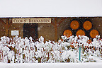 Clos Saint Bernadin - Beaune, France. Wine barrels &amp; vines in the snow