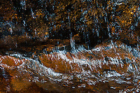Water making its way through the rocky terrain of the Great Smoky Mountains National Park in North Carolina.