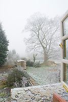 View of backyard garden from a house window overhead in winter snow & frost, in mist, with big tree, ice on shrub branches, shed
