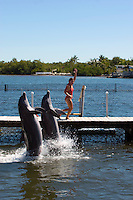 Dolphin Research Center auf Marathon, Florida Keys. ..Florida 2009..Foto © Stefan Falke.