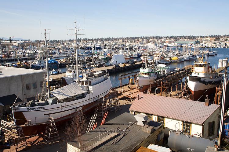 Seattle fishermen 39 s terminal fishing boats joel for Halibut fishing seattle