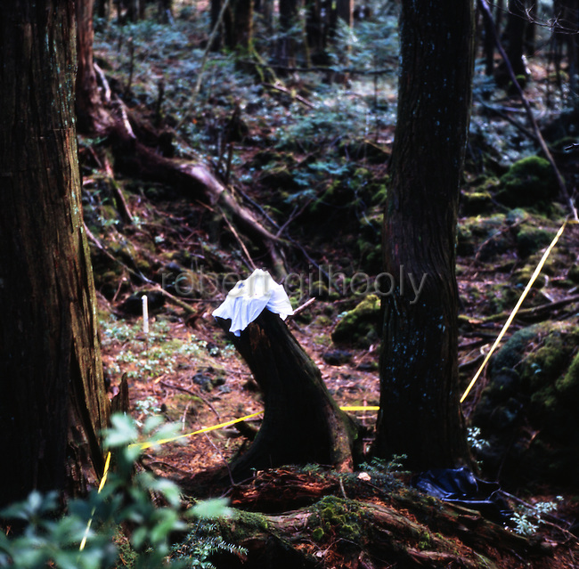 Items of clothing lie in the undergrowth of Aokigahara Jukai, better known as the Mt. Fuji suicide forest, which is located at the base of Japan's famed mountain west of Tokyo.