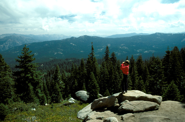 CA: Sequoia-Kings Canyon National Park, Panoramic Point, model released    .Photo Copyright: Lee Foster, lee@fostertravel.com, www.fostertravel.com, (510) 549-2202.Image: catree202.