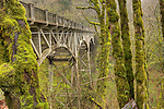 Latourell Falls Bridge and trees covered in Moss on the old Highway in the Columbia River Gorge Oregon
