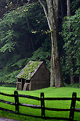 Stumbling upon a small cottage on a misty rainy morning in Solebury Twp., on Friday June 20, 2003 looks as though a hobbit might appear. photo by jane therese