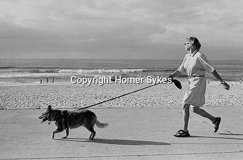 Morning exercising Power Walking the dog, Bondi beach, Sydney Australia.