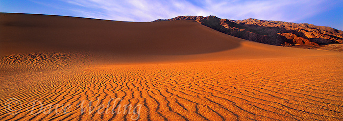 915000008 panoramic view of  ripple patterns in the sand dunes highlighted by low angled sunrise light in mesquite sand dunes near stovepipe wells in death valley national park california