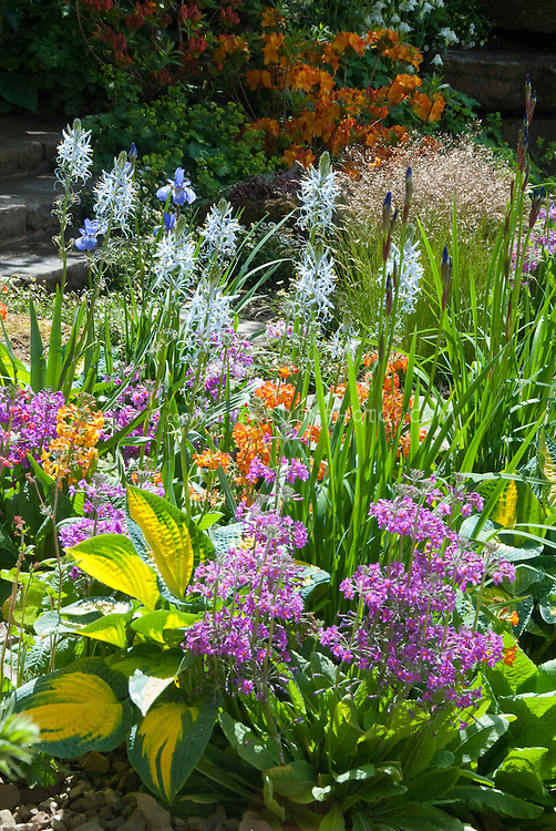 Spring Flower Garden Images spring gardens stock photos - images plant ...