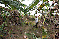 """Cambodia - Kampong Speu Province -  Cheng Sopheap, 46, walking through his banana plantation, in the village of Ploch. As the community representative for the commune of Tror Peangchor, he represented several families affected by land grabbing during talks with authorities and sugar companies. Although he was farly compensated, having received 6 hectares of land for the 7,5 he lost, Sopheap claims authority tried several times to intimidate and bribe him in order to win the resistance of the affected families. """"Thirty families have been resettled in this area, and this is all thanks to my activism"""" he says. Still, he claims his income his lower than before, and some of his kids have been forced to work as labourers in the sugar plantation to make ends meet."""