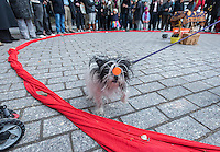 Even dogs are glad to see winter leave at Urban Shaman Donna Henes'  39th Annual Eggs on End:  Vernal Equinox Celebration in Bowling Green Park in New York welcoming in the first day of spring on Thursday, March 20, 2014.  At the precise moment of the Spring Equinox, this year at 12:57 PM, a raw egg can be stood on its end bringing good luck for the rest of the year and dozens of participants were glad to see winter go at the ceremony. Henes has been organizing this event for 39 years.   (© Richard B. Levine)