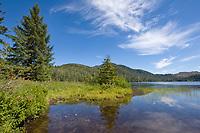 Lake Harriet Hunt, Revillagigedo Island, southeast, Alaska.