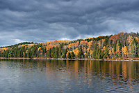 &quot;Basswood Lake Shoreline&quot;<br />