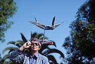 Los Angeles, CA, October 1981. An ornithopter is an aircraft that flies by flapping its wings. Man always observed birds and very early tried to imitate them. Actually KEN JOHNSON is a well known orinthopter maker. He participated to many international contests. The goal is to fly the longer time and distance. Photo of some home made ornithophers.