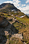 Logan Pass in Glacier National Park, Montana, has gorgeous geologic features, foliage, and flora.