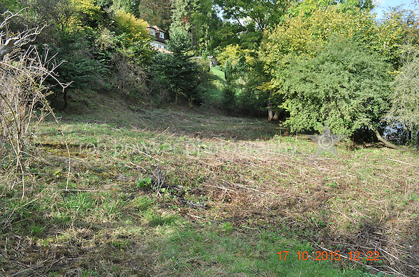 RIVERSIDE AMENITY LAND AT STREATLEY. TITLE NO: BK381630<br /> From the bottom of the track, looking upstream.