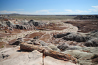 Painted Desert - Petrified Forest National Park - Arizona