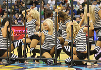Feb 19, 2010; New Orleans, LA, USA; New Orleans Hornets Honeybees dancers perform during a game against the Indiana Pacers at the New Orleans Arena. The Hornets defeated the Pacers 107-101.  Mandatory Credit: Derick E. Hingle-US PRESSWIRE