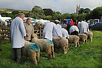 Widecombe Fair, Widecombe in the Moor,  Dartmoor,  Devon Uk.  St Pancras Church in distance