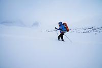 Female nordic ski tourer in deep snow near Kebnekaise Fjällstation, Lapland, Sweden
