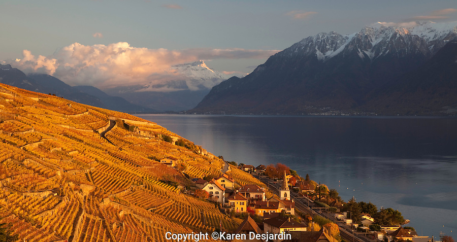 Switzerland-Lavaux wine region