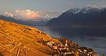 Switzerland-Lavaux wine region
