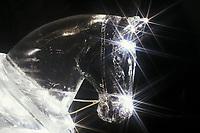 Ice Sculpture, Draft horse