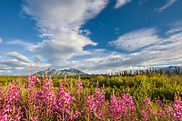 View of the Wrangell St. Elias mountains from the Yukon Territoy, Canada