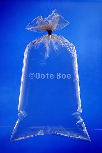 a closed plastic bag filled with air
