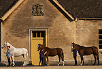 Stable block Badminton House estate, Stable girls groom horses. Gloucestershire England. Duke of Beaufort Hunt horses. They  will be inspected by the Head Groom.