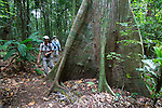 Smithsonian Tropical Research Institute, Barro Colorado Island, Panama