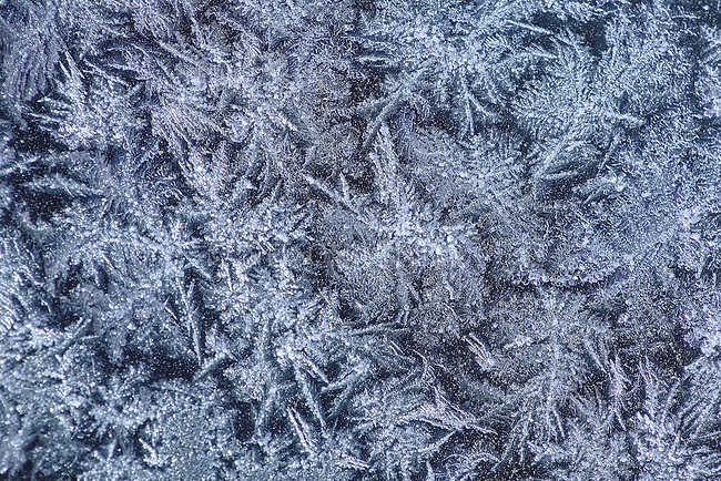 Frost crystals on glass