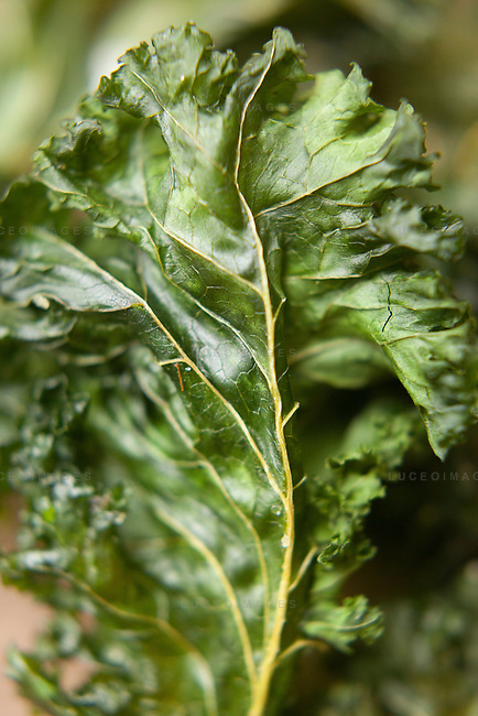 Kale chips prepared by Kristen Beddard, 29, of The Kale Project, in Paris, France.  Kevin German / Luceo