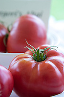Gregori's Altai Heirloom Tomato