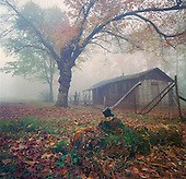 Old farm house with ax in log on foggy morning