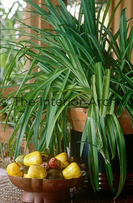 A bowl of local exotic fruit stands on a side table in the dining area