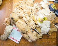 BNPS.co.uk (01202 558833)<br /> Pic: PhilYeomans/BNPS<br /> <br /> No bear is to far gone to be repaired.<br /> <br /> Broken bears and deteriorating dolls from all over the world are being brought back to life by a UK team of dedicated doctors and nurses at one of the last remaining toy hospitals.<br /> <br /> The team at Alice's Bear Shop, a teddy bear and doll hospital in Lyme Regis, Dorset, perform all kinds of 'surgery' from simple restringing and re-stuffing to head re-attachments and complete skin grafts.<br /> <br /> Rikey Austin, 49, opened the hospital in January 2000 but also ran a shop and only repaired one or two toys a month.<br /> <br /> Now she has a four-month waiting list for patients and has had to close the shop to focus on the hospital side of the business.