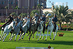 andalusian_horses