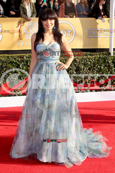 LOS ANGELES, CA - JANUARY 27: Zuleikha Robinson at The 19th Annual Screen Actors Guild Awards at the Los Angeles Shrine Exposition Center in Los Angeles, California. January 27, 2013. Credit: MediaPunch Inc. /NortePhoto /NortePhoto