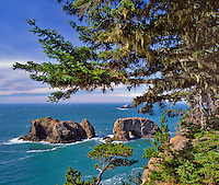 Arch Roch at Samuel H. Boardman State Park in Curry County Oregon