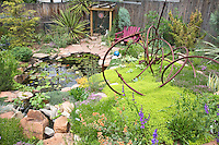 A chartruse mat of creeping thyme provides the color accent for a creative art work make by Dan Johnson, whose backyard Denver garden featues a quiet waterfall and  koi pond.