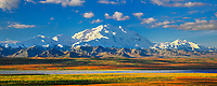 North face of 20, 3020+ ft. Mt. McKinley (locally called Denali) and Mt. Foraker, autumn tundra and McKinley river bar, Denali National Park, Alaska.