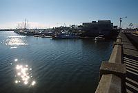 1989 February 01..Conservation.East Ocean View....OCEANVIEW BRIDGE...NEG#.NRHA#..