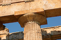Close up of the ancient Doric Greek capitals & columns of the  Temple of Hera of Paestum built in about 460–450 BC. Paestum archaeological site, Italy.