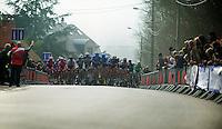3 Days of West-Flanders, .day 2: Brugge-Kortrijk/Bellegem.peloton approaching