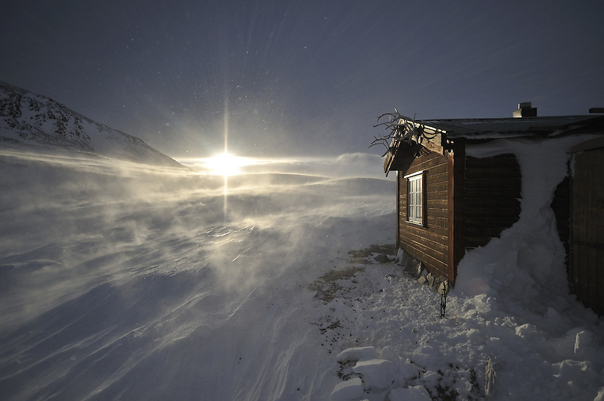 Mountain cabin in Dovre national park,Norway Landscape, landskap,