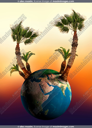 Conceptual stock photo-illustration of The Earth globe in sunset colors with Palm trees growing from it Summer vacation Tourism Ecology Resort Beach Recreation Environmental colorful concept Vertical
