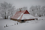 Washington, Eastern, Steptoe. An old barn with red roof in a winterscape on the Palouse.