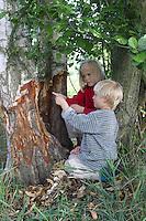 Europäischer Biber, Kinder entdecken Fraßspur, Nagespur an einem Baumstamm, Castor fiber, European beaver, Castor d´Europe
